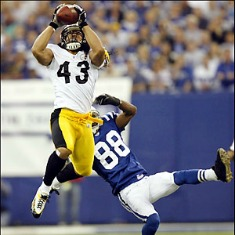 troy-polamalu-11