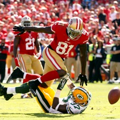 anquan_boldin_14_large