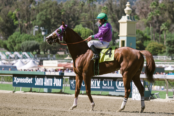 CaliforniaChrome_HorseRacing_SanFelipe3